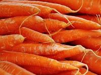 Zat-zat Makanan Dan Nutrisi Yang Dibutuhkan Kelinci