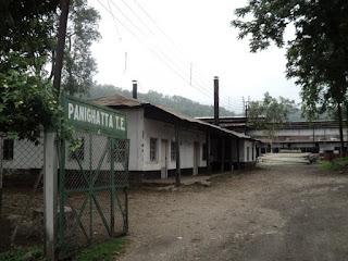 closed Panighata tea estate