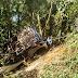 Queda de ônibus na serra de Ubatuba deixa ao menos 4 mortos e 20 feridos