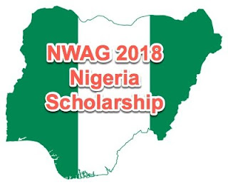 NWAG Scholarships for Female Nigerian Undergraduate Students - 2018