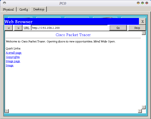 setting dns server cisco packet tracer