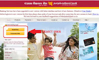 change pnb bank internet banking userid
