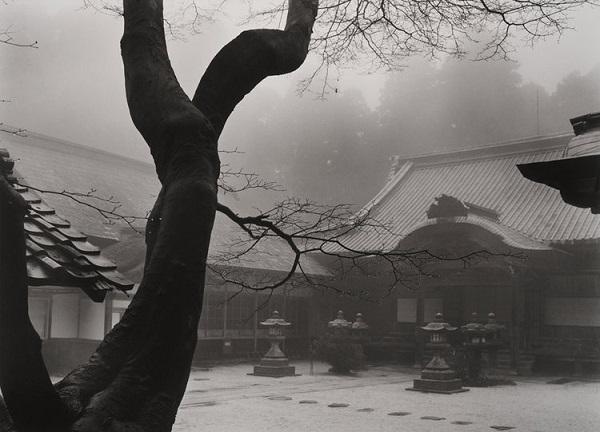 Templos, bruma, niebla, Japón, Kyoto, invierno, arboles, paisaje