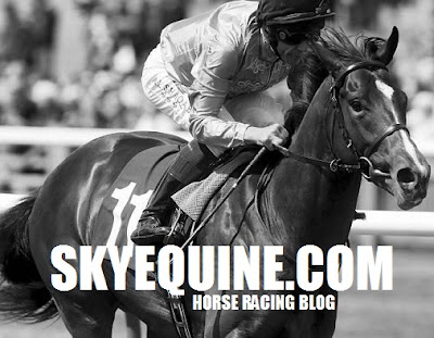 racing tips, betting tips, racing news