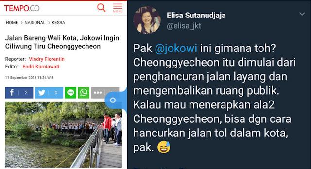 """Berharap Ciliwung Sebersih Cheonggeyecheon, Jokowi """"Diskak"""" Elisa Sutanudjaja"""