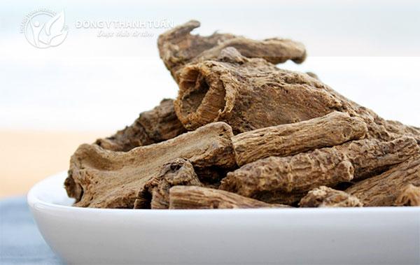 Mộc hương là thảo dược nổi tiếng chữa bệnh đường tiêu hóa tốt