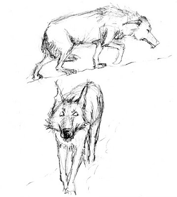 croquis illustration wolf loup faché difficile