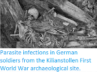 http://sciencythoughts.blogspot.co.uk/2014/10/parasite-infections-in-german-soldiers.html