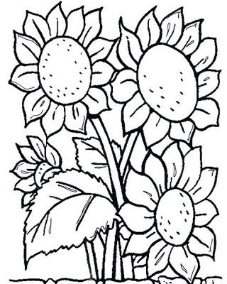 risco de flor para pintar