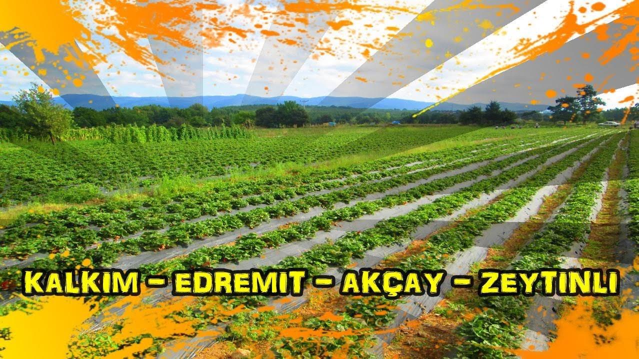 2018/08/14 Kalkım - Hacıaslanlar - Çamcı - Edremit - Kadıköy - Akçay - Zeytinli - Mehmetalan