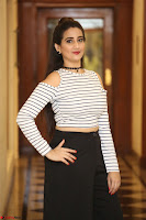 Manjusha in sleevelss crop top and black skirt at Darshakudu pre release ~  Exclusive Celebrities Galleries 053.JPG