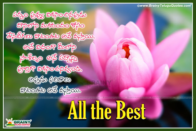 Here is a Inspiring All the best quotes and Images in Telugu,All the best Motivated messages in Telugu Language,Telugu New and NIce Quotes about Talent, Telugu Best Talent Quotes and Images,Cute Telugu Smile Thoughts and All the best Words in Telugu Language, Telugu Inspiring Motivated Lessons and All the best Quotes,Change World with Smile Quotes in Telugu Language,Cute Girl Smiling Quotes and Telugu All the best Pics,Top Telugu Inspirational Quotes about Your Talent, Show Your Talent Inspiring & Motivated Quotes in Telugu Language, Awesome Telugu language Talent Quotes,Telugu All Time Best and Famous Best of Luck Wishes Greetings Images,All the best Wallpapers HD, Always Nice All the best Greetings