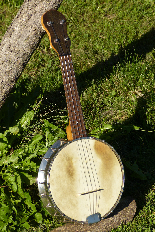 gibson banjo - Google Trends