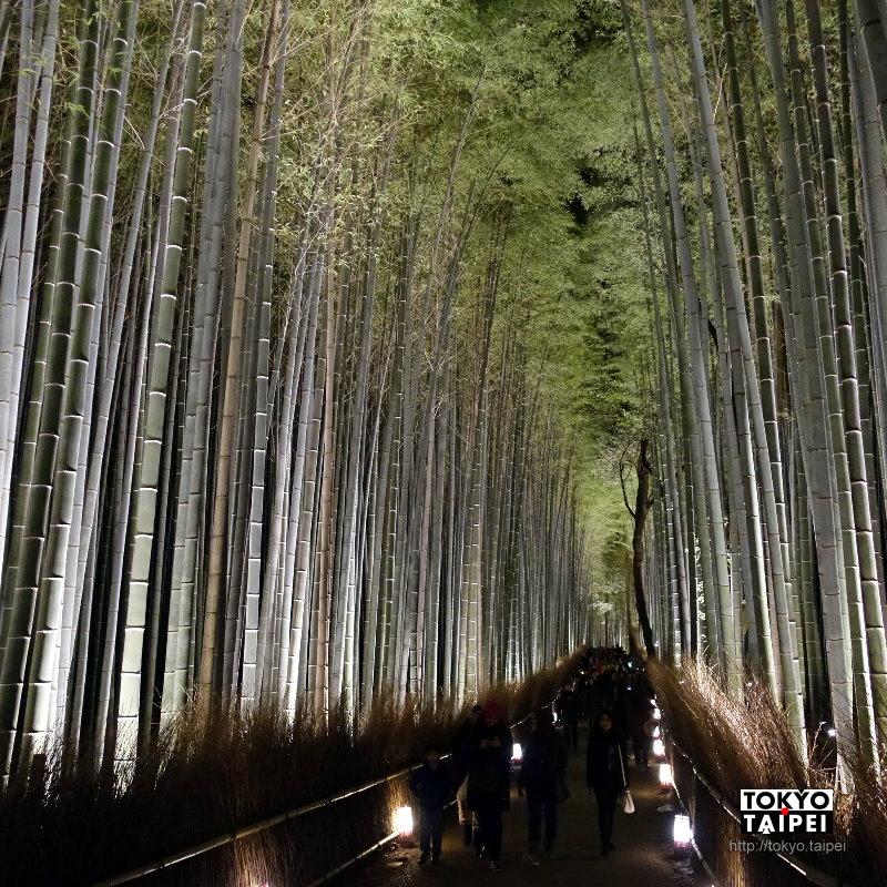 【京都嵐山花燈路】走過奇幻的竹林小徑 望向夜裡發光的山頭