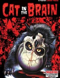A Cat in the Brain | Bmovies