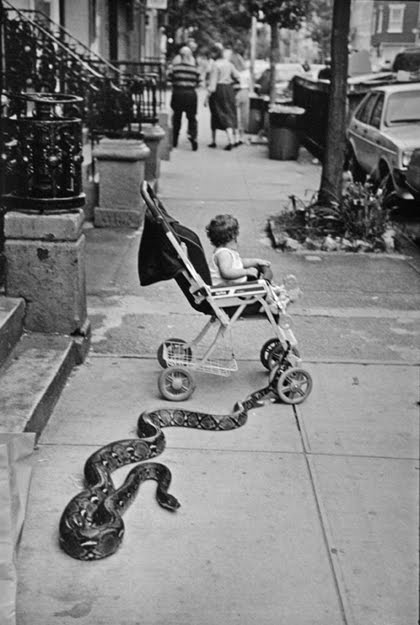 America from 1970s by Leonard Freed  vintage everyday
