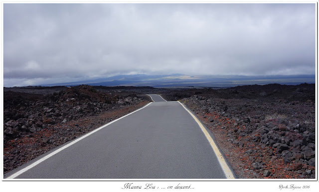 Mauna Loa: ... on descent...
