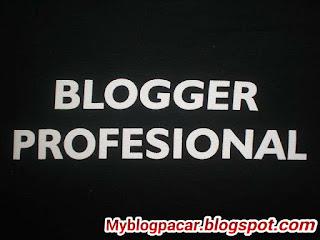 inudia blogger profesional