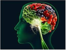 Imagen de un cerebro que contiene alimentos beneficiosos para la salud mental