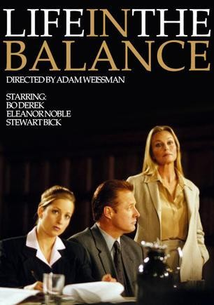 Life in the Balance 2004 movieloversreviews.filminspector.com poster
