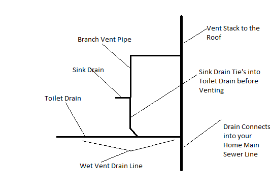 Plumbing code violation experiences automatic venting for Whole house plumbing trap