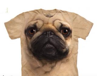 cara de perro pug