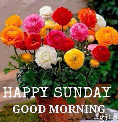 Good Morning Happy Sunday Friends