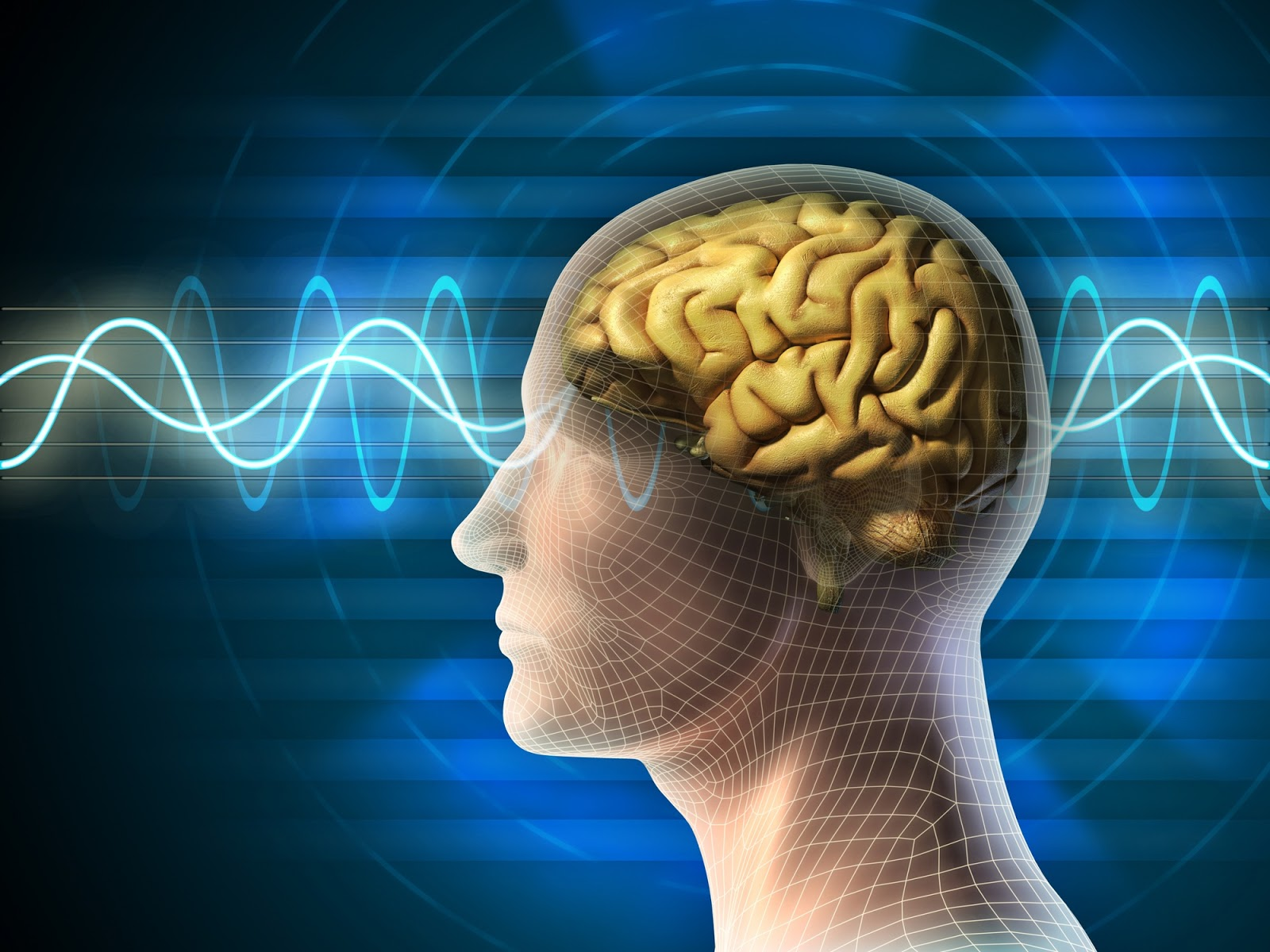 Stanford Study On Brain Waves Shows How >> Trendssoul By Ozlem Yan Devrim Stanford Study On Brain Waves