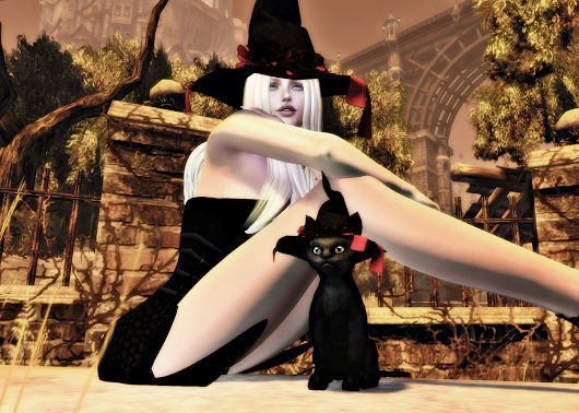 MOoH! Witch Black Cat