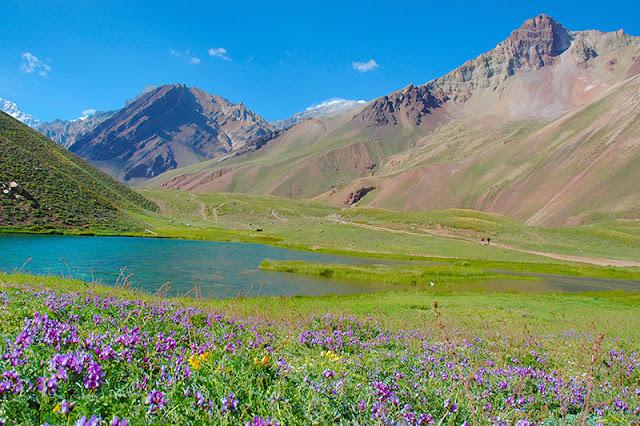 Primavera em Mendoza, na Argentina