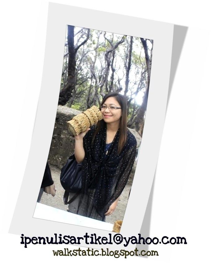 Emel Baru Penulis Artikel Malaysia