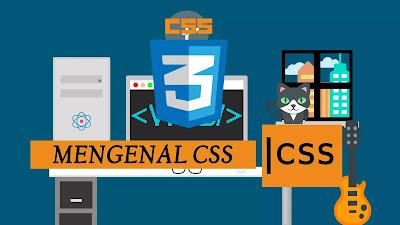 Belajar CSS Pemula
