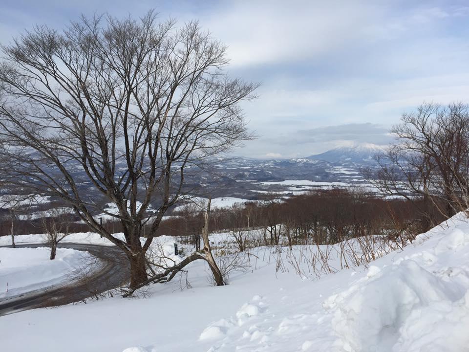旅行 北海道