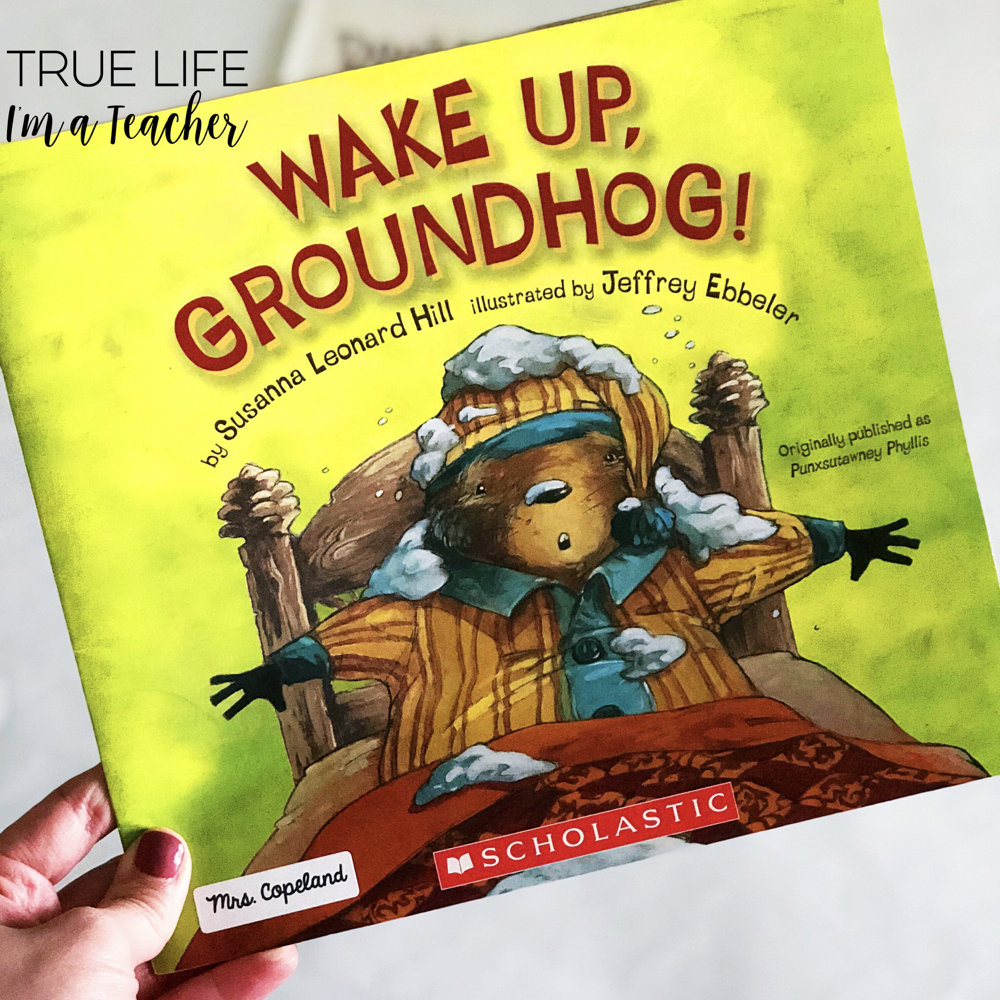 hight resolution of Groundhog Day Read Alouds and Activities   True Life I'm a Teacher