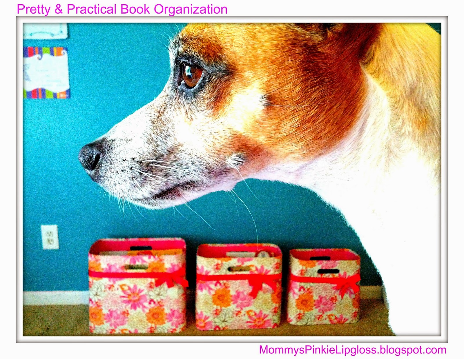 Pretty & Practical Book Organization model Dodger from MommysPinkieLipgloss.blogspot.com