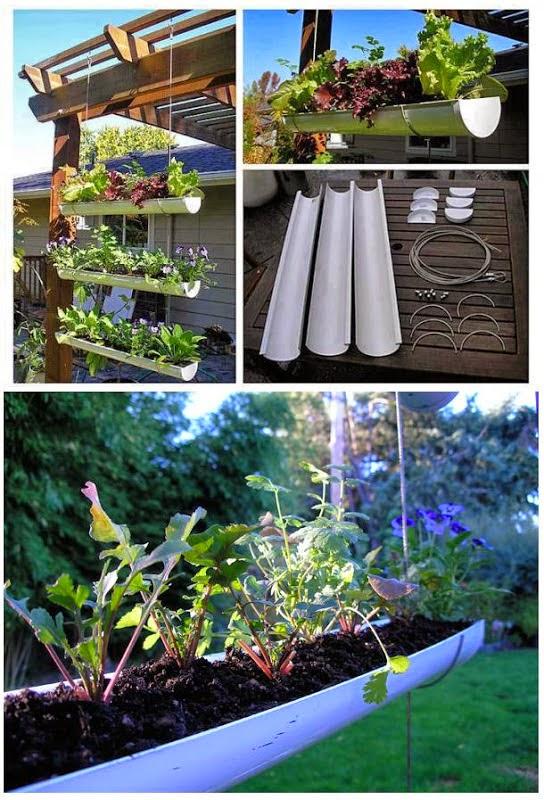 Make A Hanging Gutter Garden