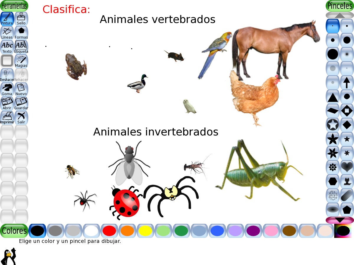 Dibujos Para Colorear De Animales Invertebrados Y Vertebrados: Dibujo De Los Animales Vertebrados