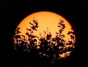 सूर्य का कन्या राशि में गोचर