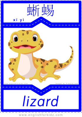 Lizard - English-Chinese flashcards for wild animals topic