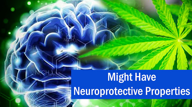Might Have Neuroprotective Properties