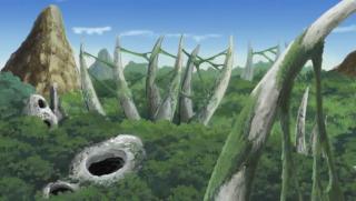 Hutan Shikkotsu
