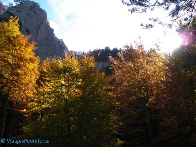 Alt Berguedà, rutes a peu per Catalunya, senderisme