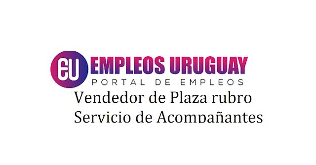 Vendedor de Plaza rubro Servicio de Acompañantes