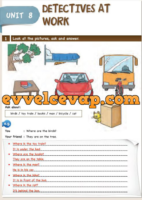 6. Sınıf Ada Matbaa Yayınları İngilizce Çalışma Kitabı 46. Sayfa Cevapları Unit 7 Occupations