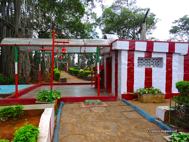 A Small Temple under the Big Banyan Tree, Bangalore