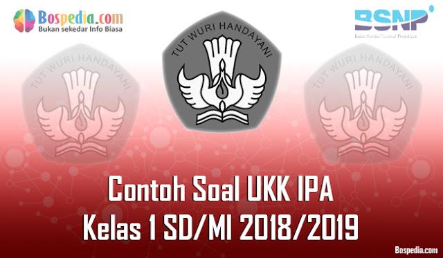 Lengkap - Contoh Soal UKK IPA Kelas 1 SD/MI 2018/2019