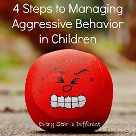 4 Steps to Managing Aggressive Behavior in Children
