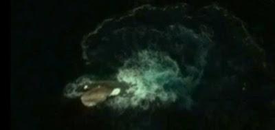 Imagem revela que existe um enorme Kraken na Antartida