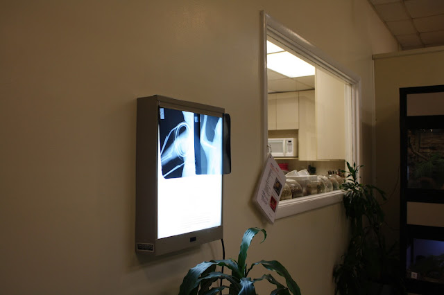 Food preparation area and an example of an x-ray at Willowbrook Nature Center.