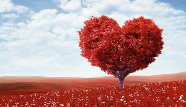 صور جميلة لقلوب حمراء صور رائعه